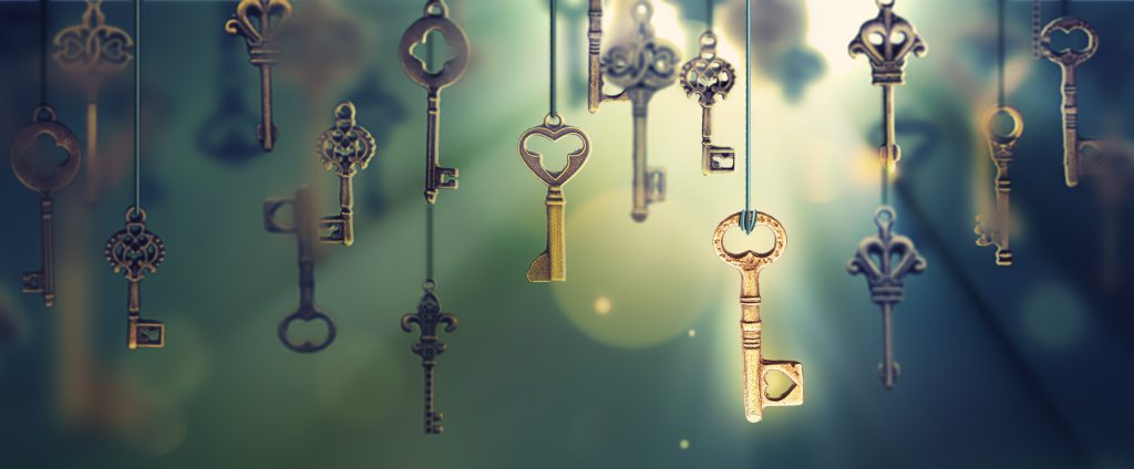 SolDevelo blog Key to success